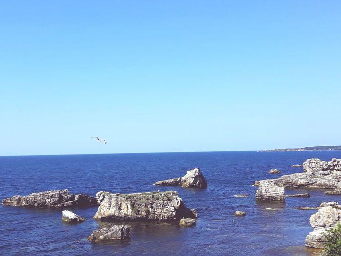 Water Blue Blue