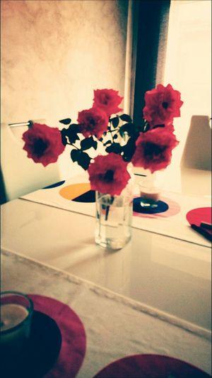 Floewers Flower Art Love Couple My Photo
