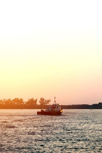 Sail. Sunset Business Finance And Industry Sea Nautical Vessel Water Tranquility Nature Fishing Outdoors Beauty In Nature Sky No People Silhouette Ship Day Transportation Scenics Clear Sky Horizon Over Water Travel Destinations