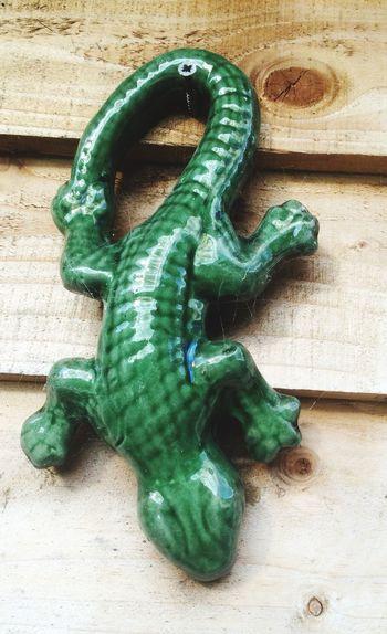 Lizard Wall Ornament Green Lizard Lizard China Shed
