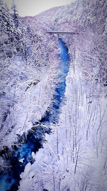 Japan Hokkaido Biei Winter River Snow Blue Riverside Riverscape Riverbank River View Frozen River Frozen Nature Frozen Nature_collection Nature Nature Photography