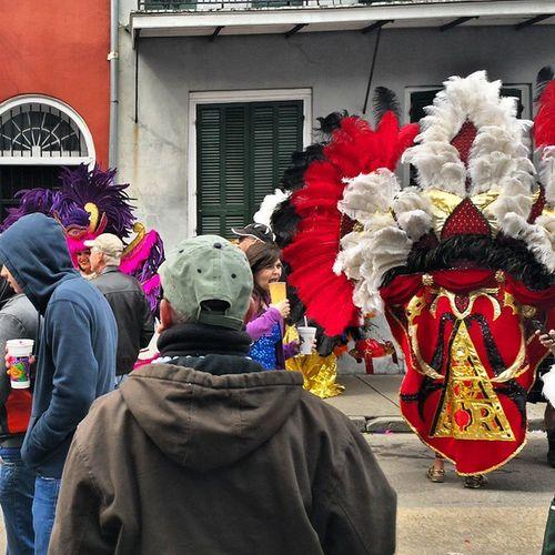 Mardi Gras Mardigras2015 Bourbonstreet Bourbonawards Pride NewOrleans Louisiana