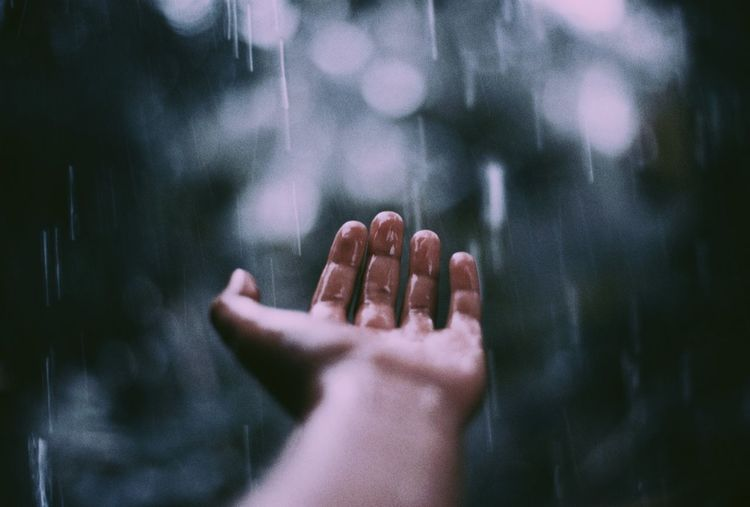 Cropped hand of person holding water during rainy season
