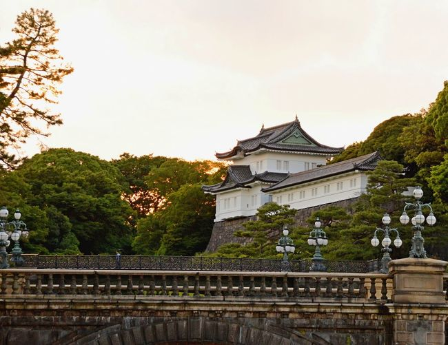Double Bridge Tokyo The Week On EyeEm Architecture Cultures History Imperial Palace Double Bridge Tokyo Outdoors Sunset Tokyo Photography Tokyo Temple Tree