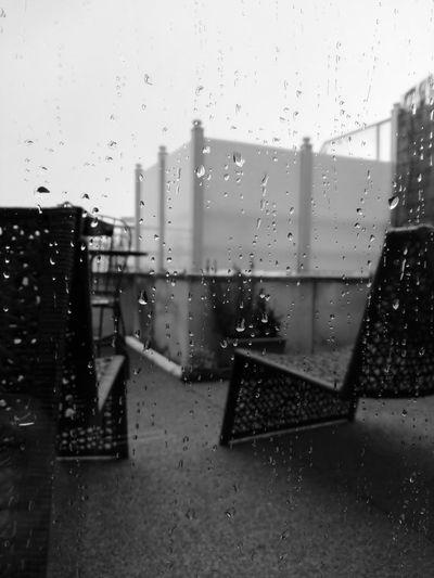 Enjoying rain Rainy Days☔ Rain Rainy Season Raindrops On My Window Raining Outside Blackandwhite Beauty In Nature Blackandwhite Photography