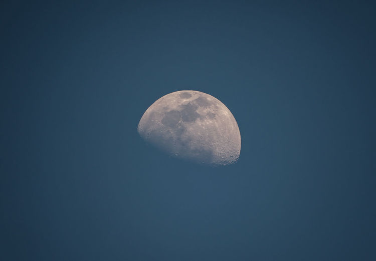 Waxing Gibbous moon face Moon Astronomy Space Sky Planetary Moon Beauty In Nature Moon Surface Scenics - Nature Low Angle View No People Clear Sky Half Moon Astrology Space And Astronomy Close-up Details Textures And Shapes Details Of Nature Details Waxing Gibbous Waxing Moon
