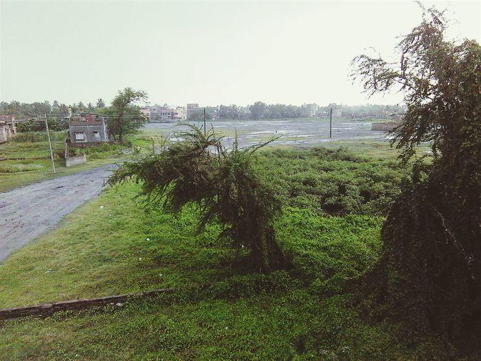 It's Raining Outside  First Eyeem Photo