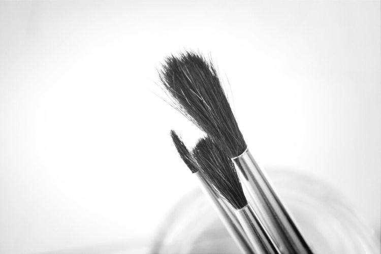 Brushes Painting Art School