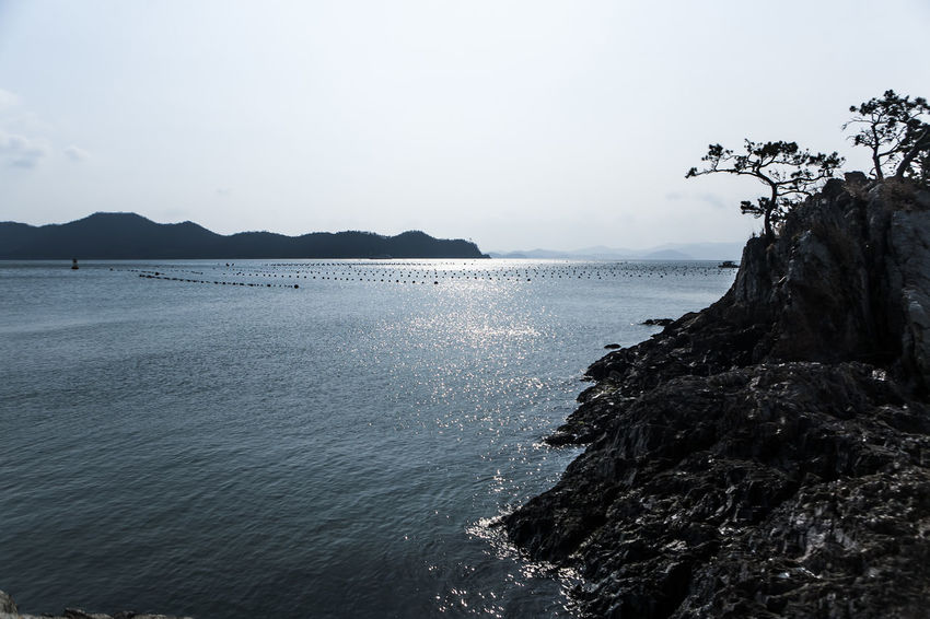 Korea Haenam Land End Village Coast Sea Island Pine Tree Rock