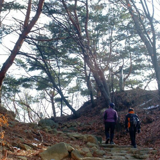 . Two is better than one Korea Seoul_korea Fujifilm S5pro people climb mountain trees instagood instamood picoftheday robin_mt robin_theme 관악산