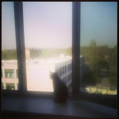 Так любит смотреть в окно^^