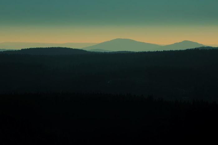 Clamvernilae Cloud Clouds Fog Forest Landscape Landschaft Licht Nebel Schleier Sonne Sunset Trees Wald Wolken