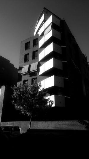 Apartment Architecture Black And White Blackandwhite Building Building Exterior Built Structure Car City Clear Sky Day Facades Low Angle View Mode Of Transportation Monochrome Motor Vehicle Nature No People Outdoors Plant Residential District Sky Transportation Tree