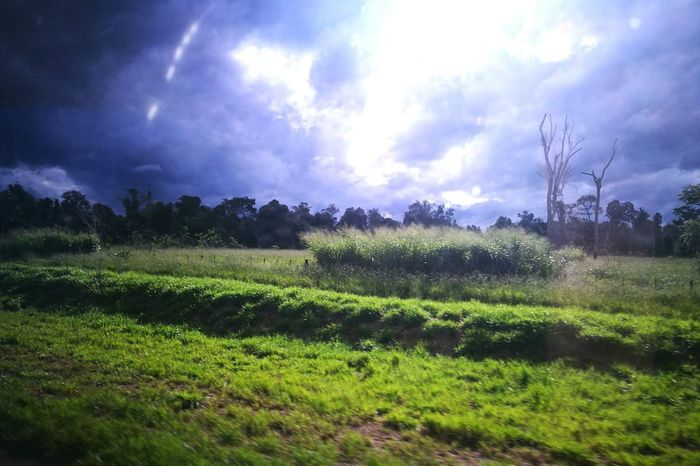 Cloud - Sky Agriculture Field No People Tree Nature Outdoors Beauty In Nature Rural Scene Sky Autumn Paradise ❤ Paraguay ♥ Ara Pyahu San Pedro