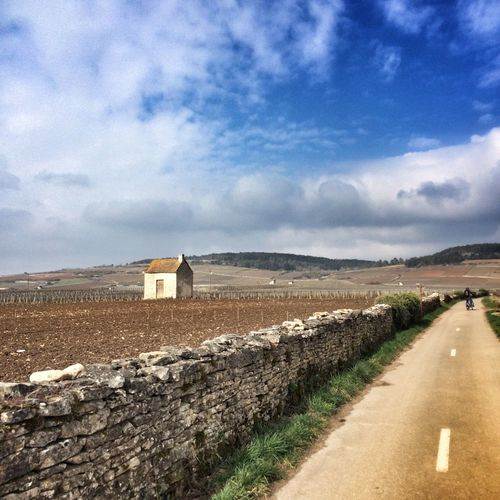 Road by agricultural land against cloudy sky