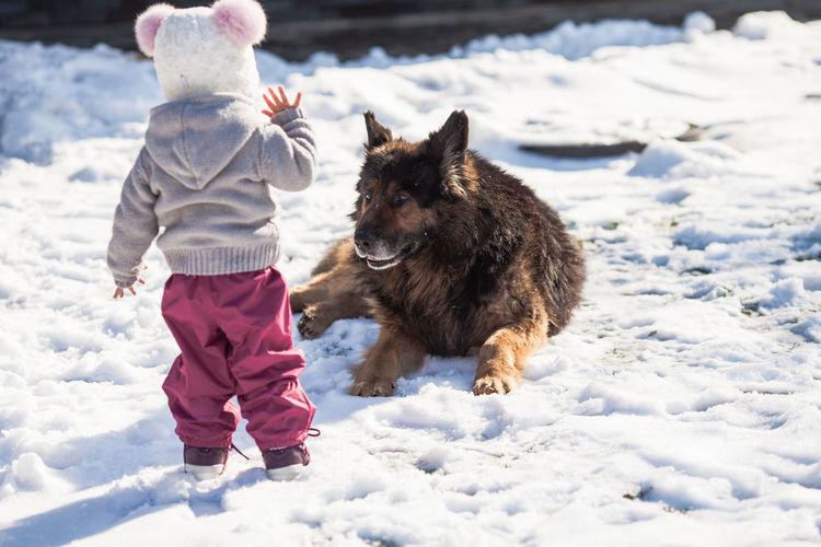Girl standing near dog on snow