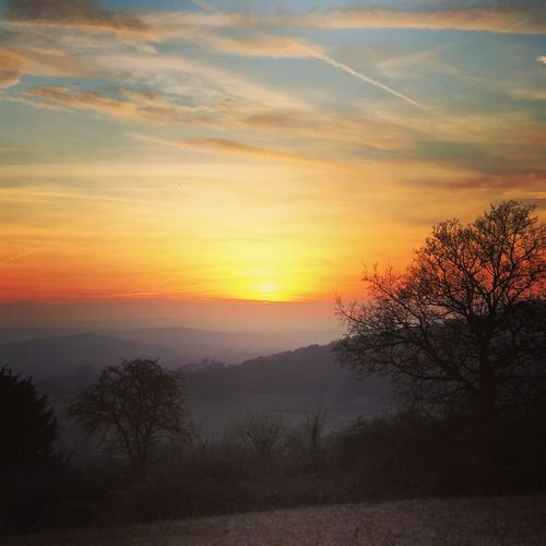 Sunset over the Surrey Hills Sunset Tree Nature Beauty In Nature Silhouette Sky Tranquility Tranquil Scene Scenics Landscape No People Idyllic Outdoors Newlands Corner Merrow Guildford Surrey Surrey Countryside Weather England Uk Europe IPhone 7 Plus Dusk Landscape Photography