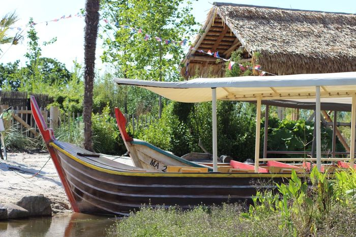 Boats Boats⛵️ Built Structure Chester Zoo Nature No People Travel Destinations Tree