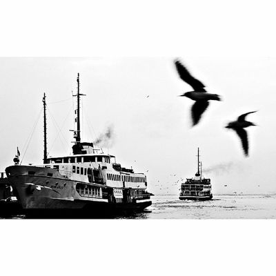 Kadıköy / 2009 16x9 16x9oftheday 16x9captures 16x9photography 16x9fordays vsco vscocambugununkaresi aniyakala turkishfollowers special_shots istanbuldayasam awardsturk zoomthelife insta_global master_pics photomafia ig_masterpiece igersistanbul bw blackandwhite photooftheday allunique_pro nature_perfection natureinside turkeyphotooftheday istanbul followme UnutulmazAnlar allianz1hikaye