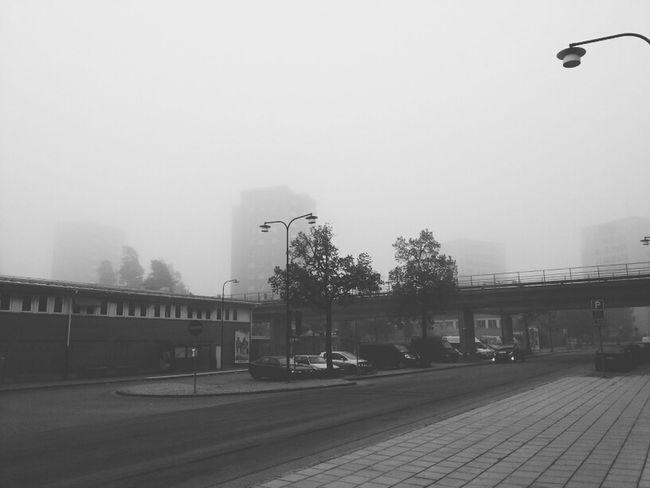 Fog Mist