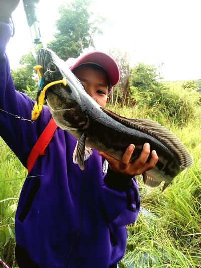 Fish Fishing Snakehead Fish Child Children Only Childhood One Person Boys People Outdoors Casual Clothing Fun Leisure Activity Males  Day One Boy Only Holding Tree Rural Scene Standing Headwear Nature Adult