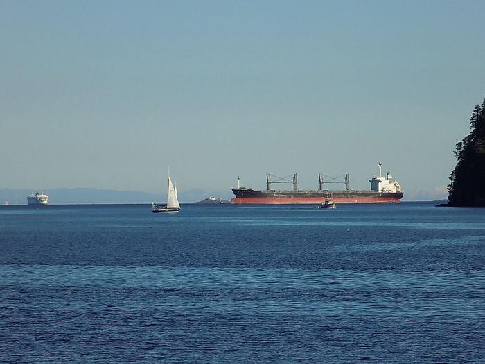 Ships passing. Nautical Vessel Business Finance And Industry Sea Transportation Industry Clear Sky Sky No People Water Outdoors Sailing Ship Outdoor Pictures EyeEmNewHere Canada 150 Vancouver Island Canada Nanaimo BC Cargo Ship Breathing Space