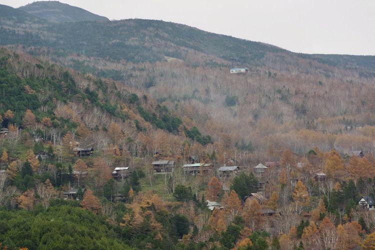 秋 山の風景 秋の風景 紅葉