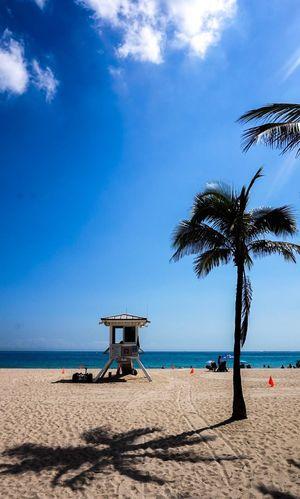 S Sea Beauty In Nature Shore Horizon Outdoors Palm Tree Sunlight Miami, FL Nice Atmosphere Miles Miles Miles Season  Lifeguard Hut Miami Las Olas Blvd
