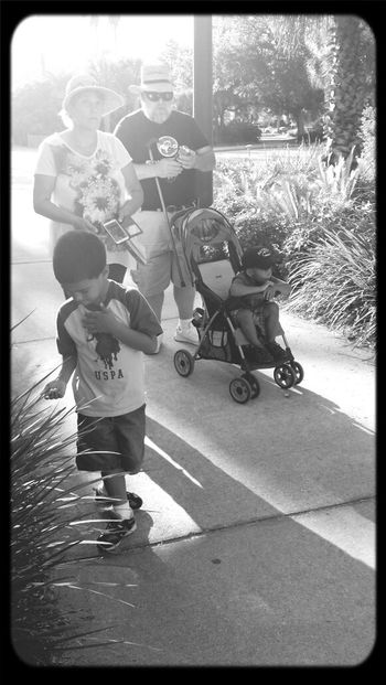Going home after a day at the Jacksonville Zoo Black And White Black & White Shadows Light And Shadow Jacksonville Zoo Jacksonville Florida
