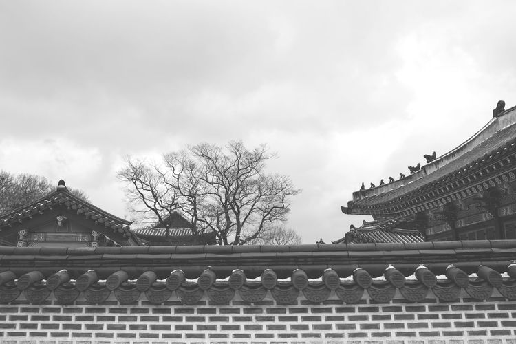 Architecture Bare Tree Black & White Blackandwhite Buddhism Building Exterior Built Structure Cloud - Sky Day Korea Low Angle View No People Outdoors Roof Sky Traditional Building Travel Destinations Tree