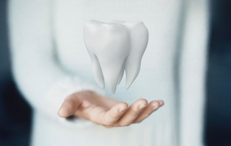 Midsection of woman holding model tooth