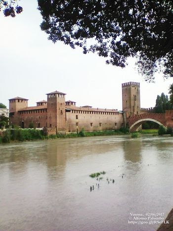 Verona, Castelvecchio Italy Verona Art Castelvecchio Verona Nature Wall Tourism Atraction City Tree Water Castle History Reflection Old Ruin Cityscape Sky Architecture Fort Fortified Wall Fortress