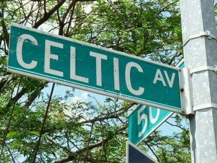 celtic wee get everywhere ヽ(´ー`)ノ HH ♥♥♥♥