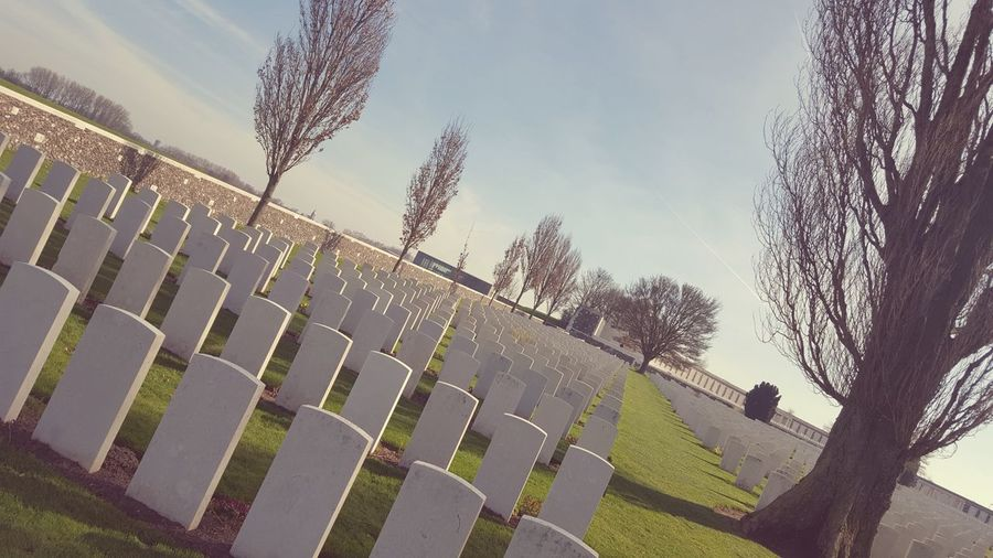 Sky Sport Grass Tree Outdoors Day People War Memorial Sunlight The Past Grave History War In A Row Belgium Military Tree Nature Grass Tombstone
