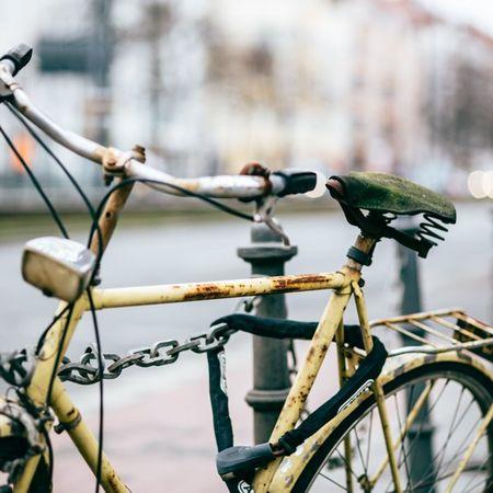 Berlin Prenzlauerberg Prenzlauerallee Street Bike Fahrrad Moos moss sattel saddle