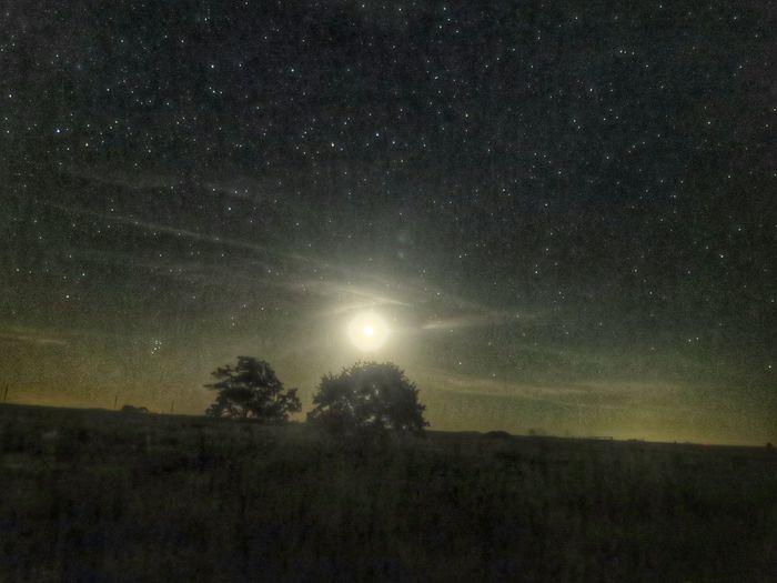Oklahomasunrise Stars