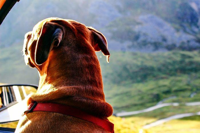 Longing for adventure by Kaos Kaos Photography Hatcher Pass