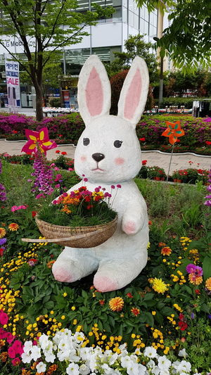 Rabbit Themapark Animal Representation Day Front Or Back Yard Outdoors No People Flower Tree Close-up Nature Freshness