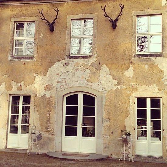 Marcolinihaus Weddinglocation Wall House farm bambi moritzburg cafe fasanenschlösschen