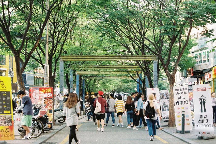 City City Life Film Film Photography Filmcamera Filmisnotdead Lifestyles Outdoors Person Proimage100 South Korea The Way Forward Travel Destinations Tree