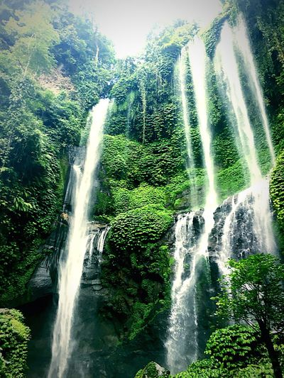 Motion Waterfall Forest Water Beauty In Nature Nature Environment Flowing Water Non-urban Scene Green Color