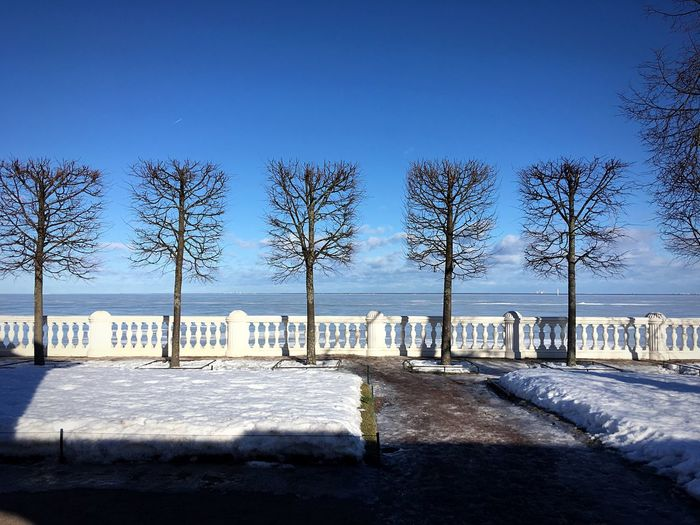 Geometry, Peterhof Squares February 2019 Sunnyday☀️ Baltic Sea Saint Petersburg Petergof Peterhof 彼得霍夫宮 Russia Петергоф 公园 Sunnyday☀️ February 2019 Bluesky Sky Tree Plant Nature Snow Winter Cold Temperature Clear Sky Sunlight Beach Tranquility