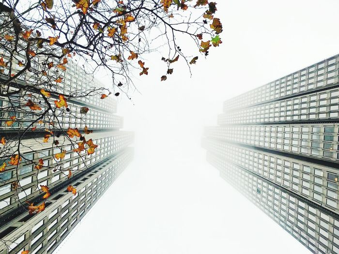 Low angle view of skyscraper against clear sky