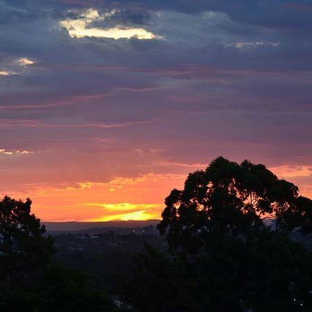 Sunset Top Ryde Sunset Visitsydney Visitaustralia Visitnsw Ryde Focusaustralia