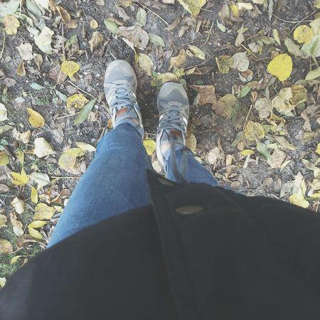 🍂🍁 Followme Taking Photos Fall