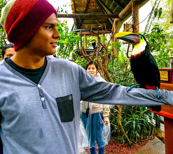 Talking with nature Tucan Wildlife & Nature Love Nature
