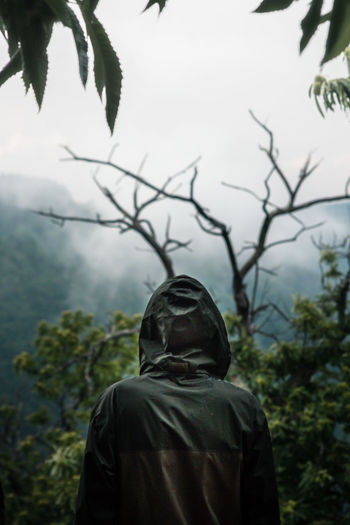 Man standing in forest at the top of the mountain