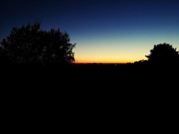 sunset momentum