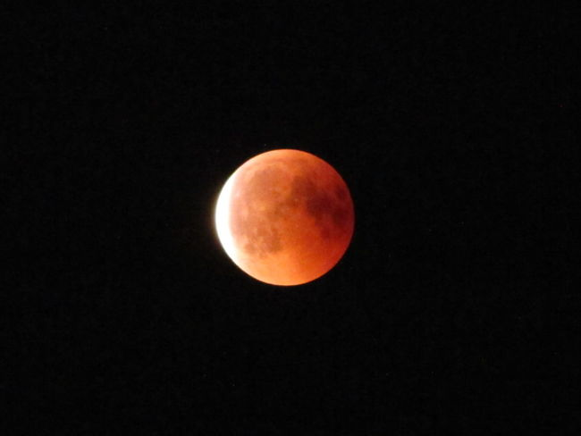 Astrology Astronomy Beauty In Nature Circle Eclipse Full Moon Geometric Shape Idyllic Majestic Moon Moon Surface Moonlight Natural Phenomenon Nature Night No People Outdoors Planetary Moon Scenics - Nature Shape Sky Space Space And Astronomy Tranquil Scene Tranquility
