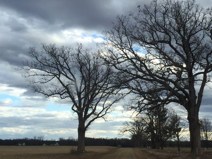 Before spring buds out. Branches Sky And Clouds Nature Cloud Landscape IPhoneography